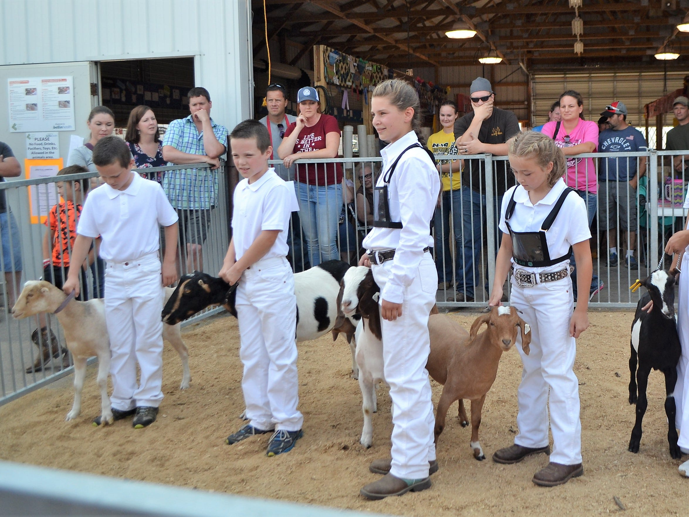 Participants lined up during the Junior Goat Judging at the Oconto County Fair on on Saturday, Aug. 18.