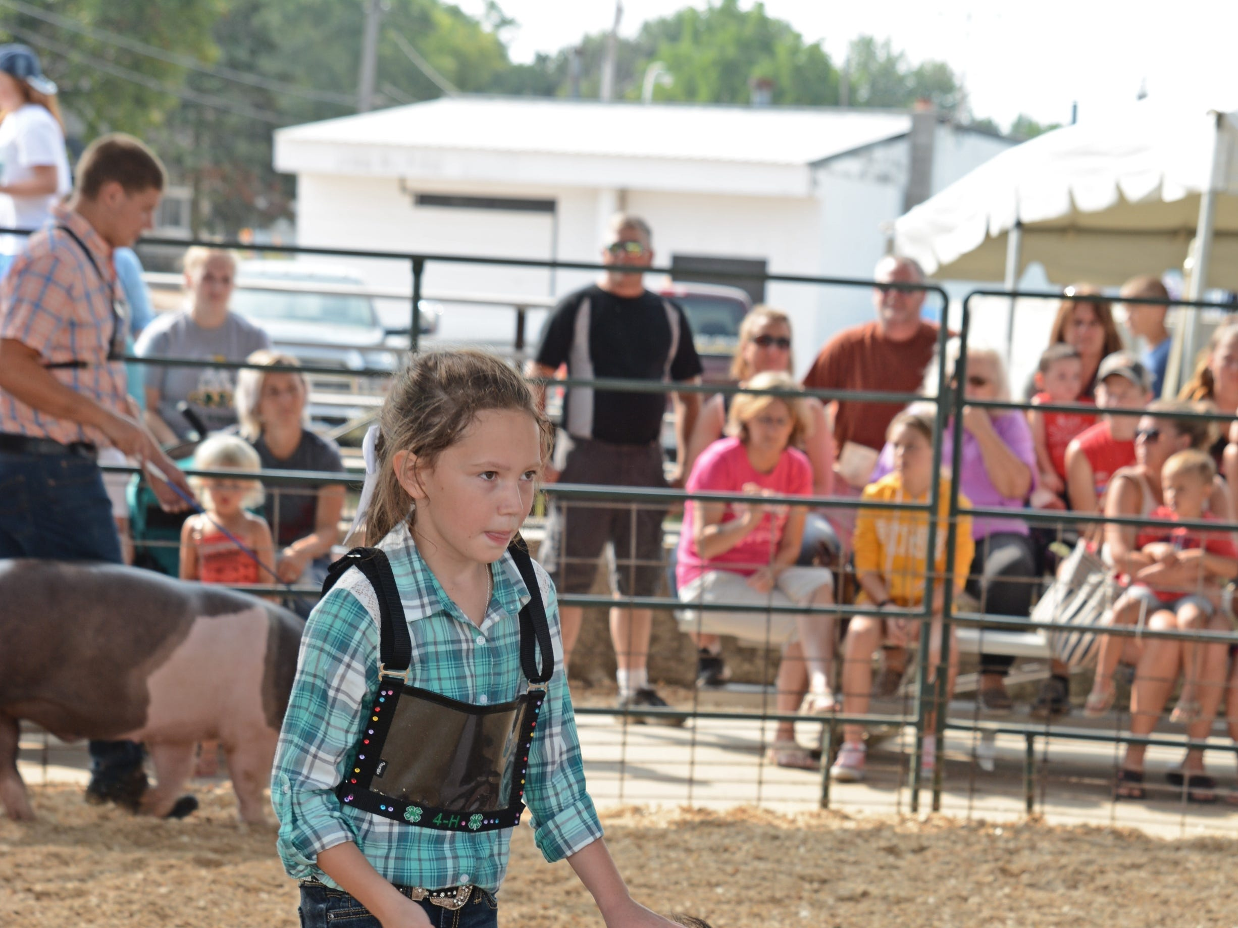 Caylee Bjelland, 9, of Christy Brook 4H Club  shows her pig at the Swine Show at the Oconto County Fair on Friday, Aug. 17. She won the Swine Medium Weight Class  and Reserve Champion.