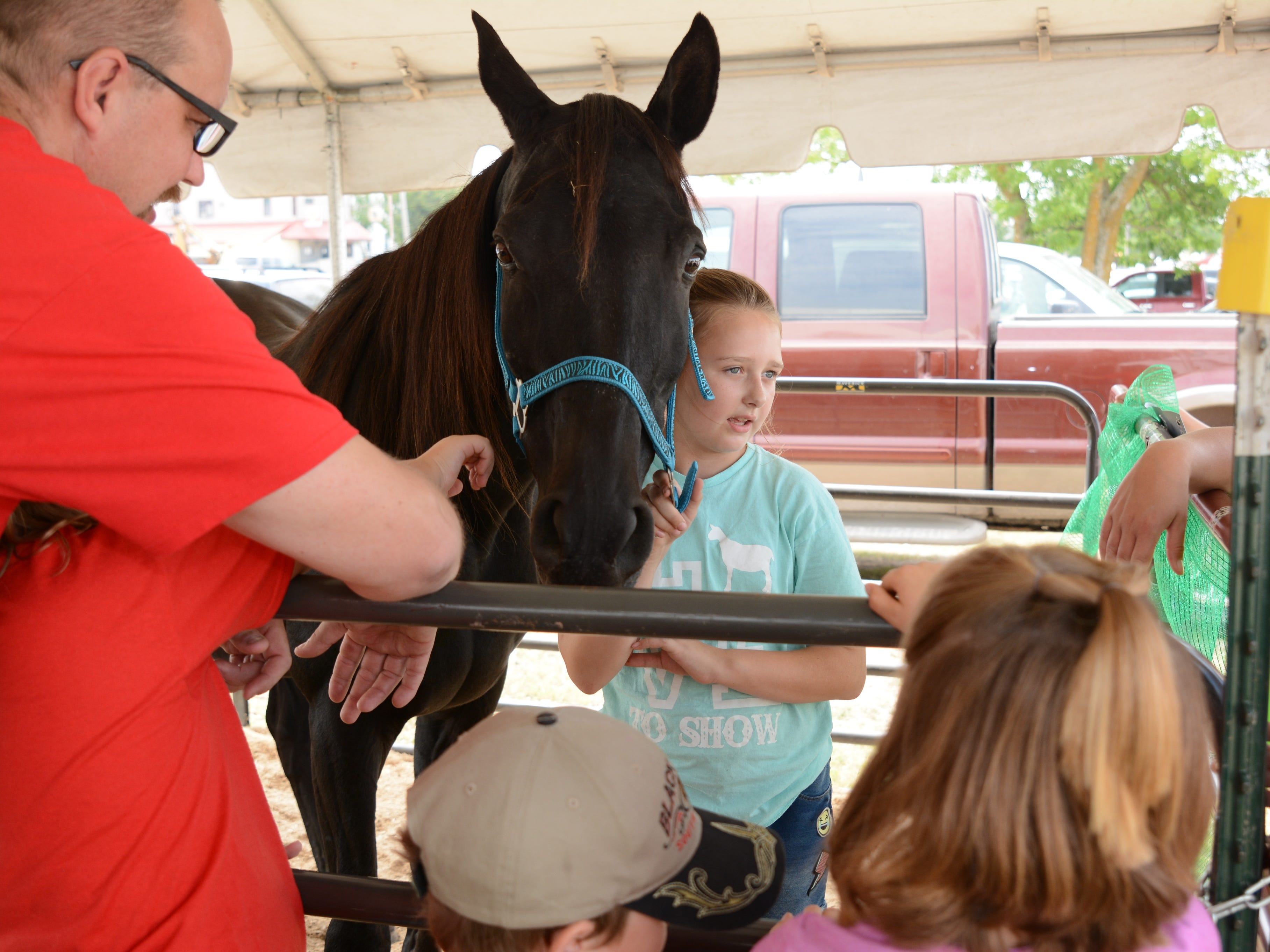 Emily Fabry of the Willing Workers 4H Club shares facts and information about her horse, Shaday, to admirers at the Oconto County Fair on Friday, Aug. 17.