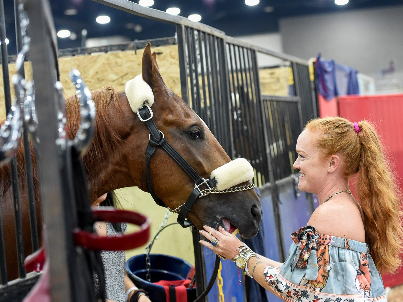 Ali DeGray feeds an apple to her mother, Helen Rich's horse I'm Ziggy Stardust, after winning the 5 GAITED KY COUNTY FAIR CHAMPIONSHIP Saturday night.