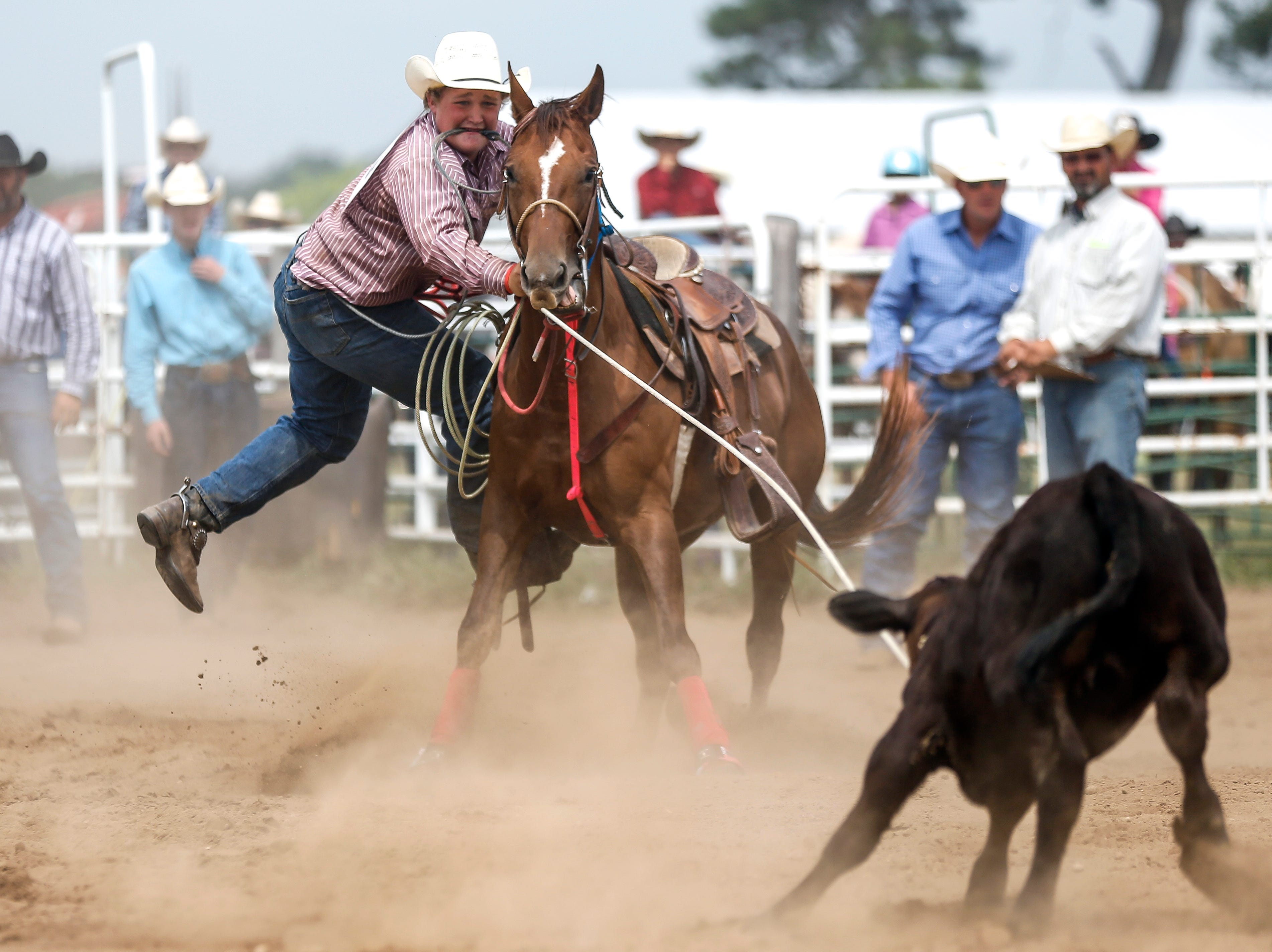 A competitor jumps off his horse after roping a calf during the Amherst Little Britches Wisconsin Rodeo in Amherst, Wis., August 17, 2018.