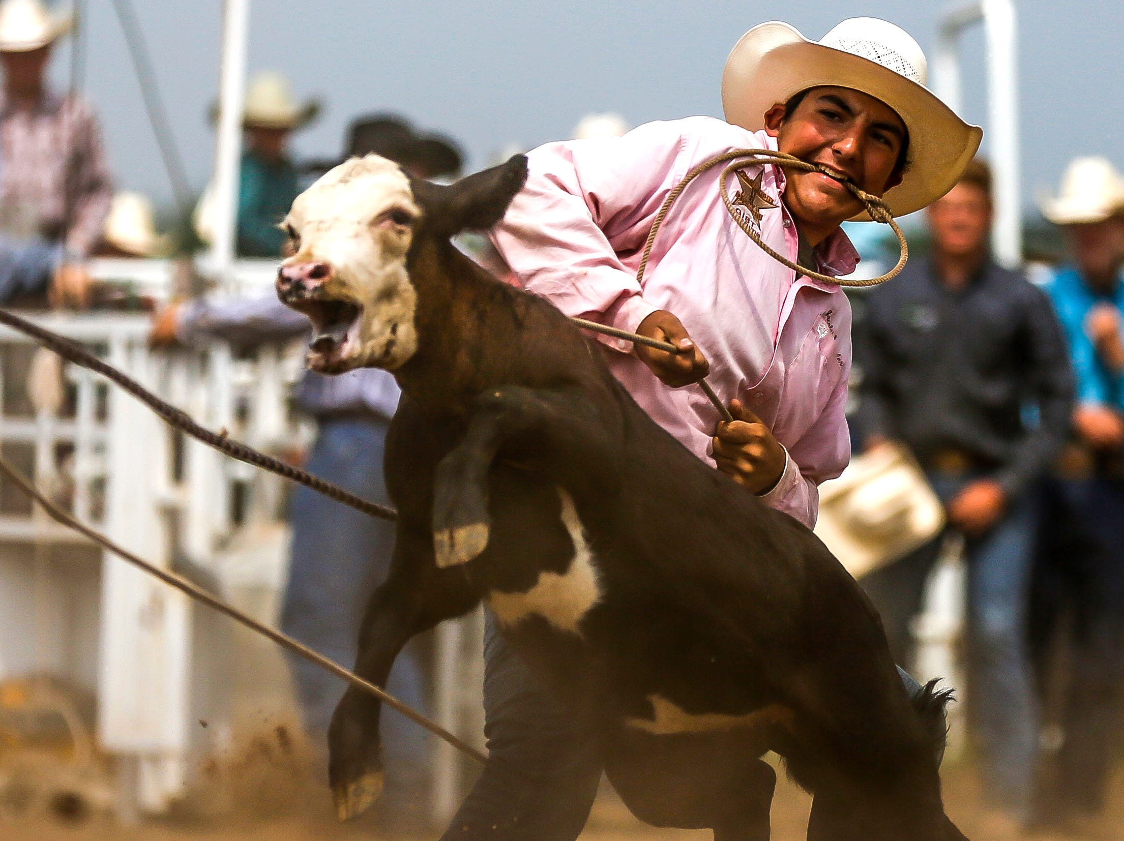 A competitor ropes a calf during the Amherst Little Britches Wisconsin Rodeo in Amherst, Wis., August 17, 2018.