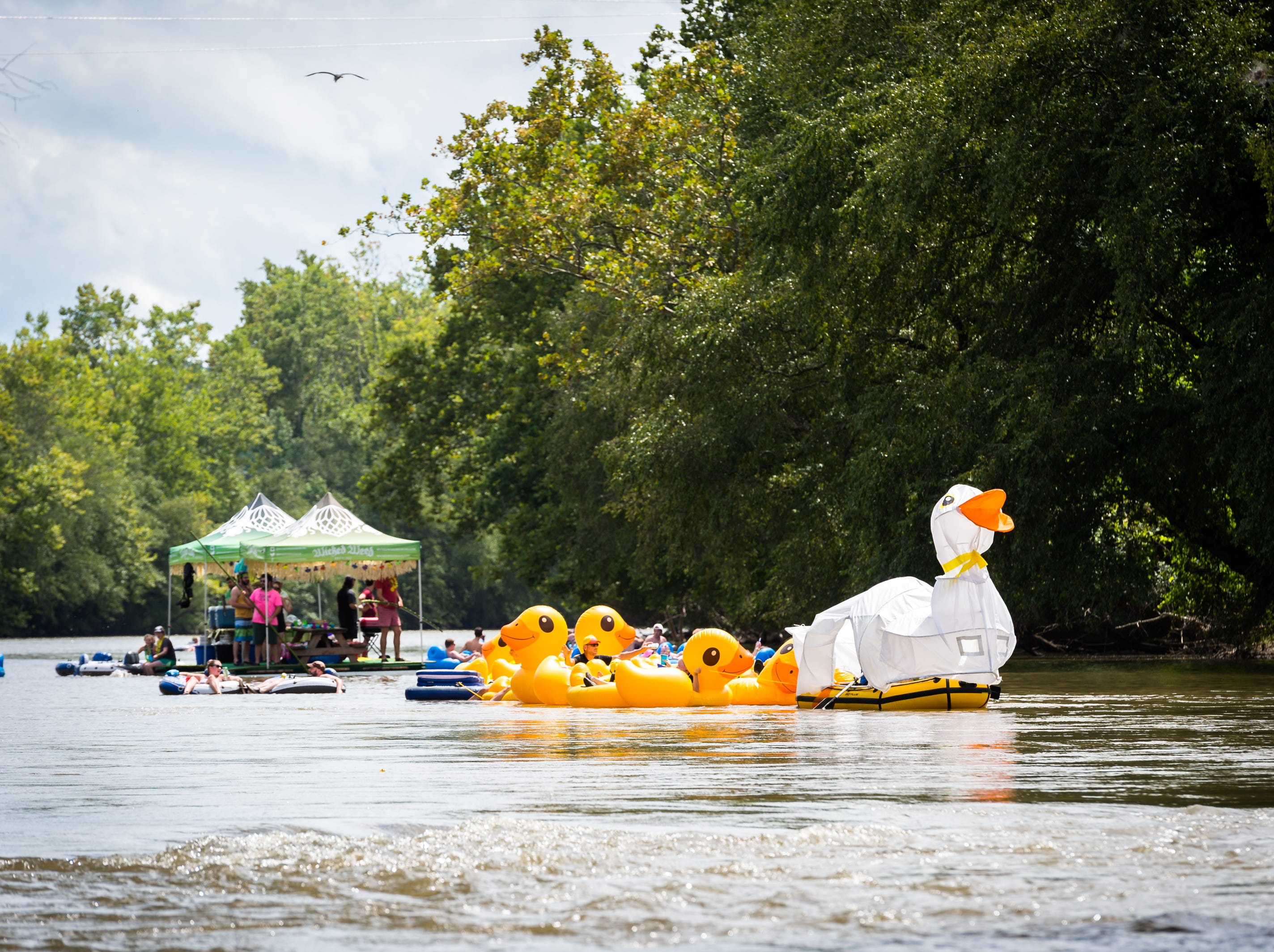 The Just Ducky Anything that Floats parade team makes its way down the French Broad River to New Belgium Brewing where RiverLink's RiverFest took place Saturday, August 18, 2018.
