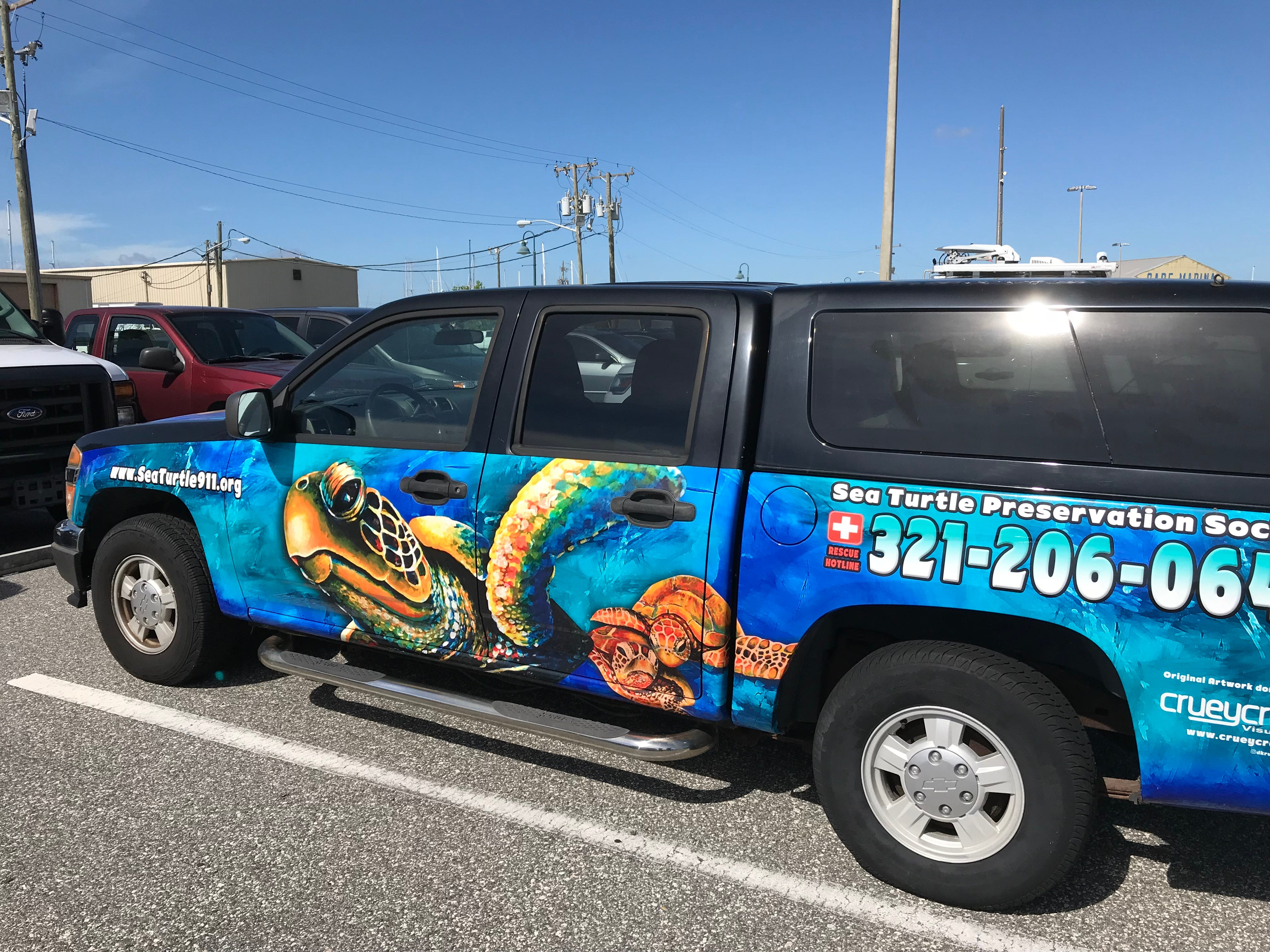 f851ea6d-ccb5-4612-88c5-1323b74feea4-Turtle1 Port Canaveral expands sea turtle rescue efforts