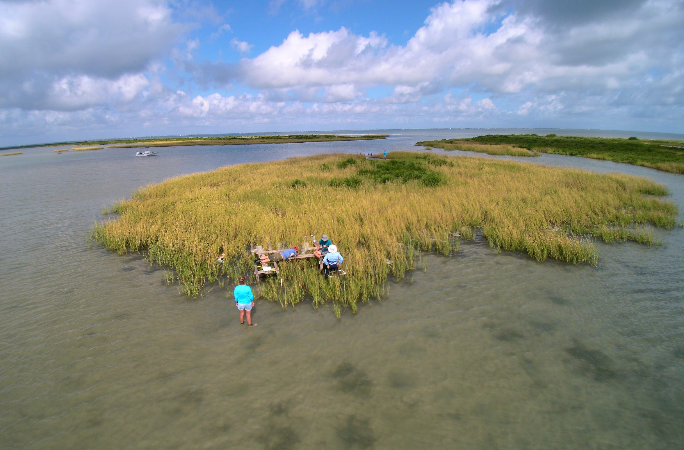 Researchers at the University of Texas Marine Science Institute and the Harte Research Center for Gulf of Mexico Studies are comparing pre-Harvey bay conditions with conditions following the storm to determine the effects.
