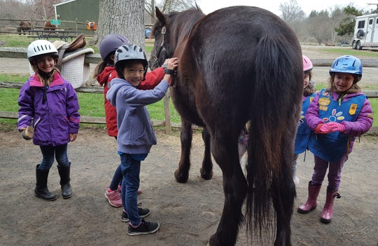 """Children are invited to """"Meet the Ponies"""" at Lord Stirling Stable, 256 South Maple Ave.in the Basking Ridge section of Bernards, on Saturday, Aug.25."""