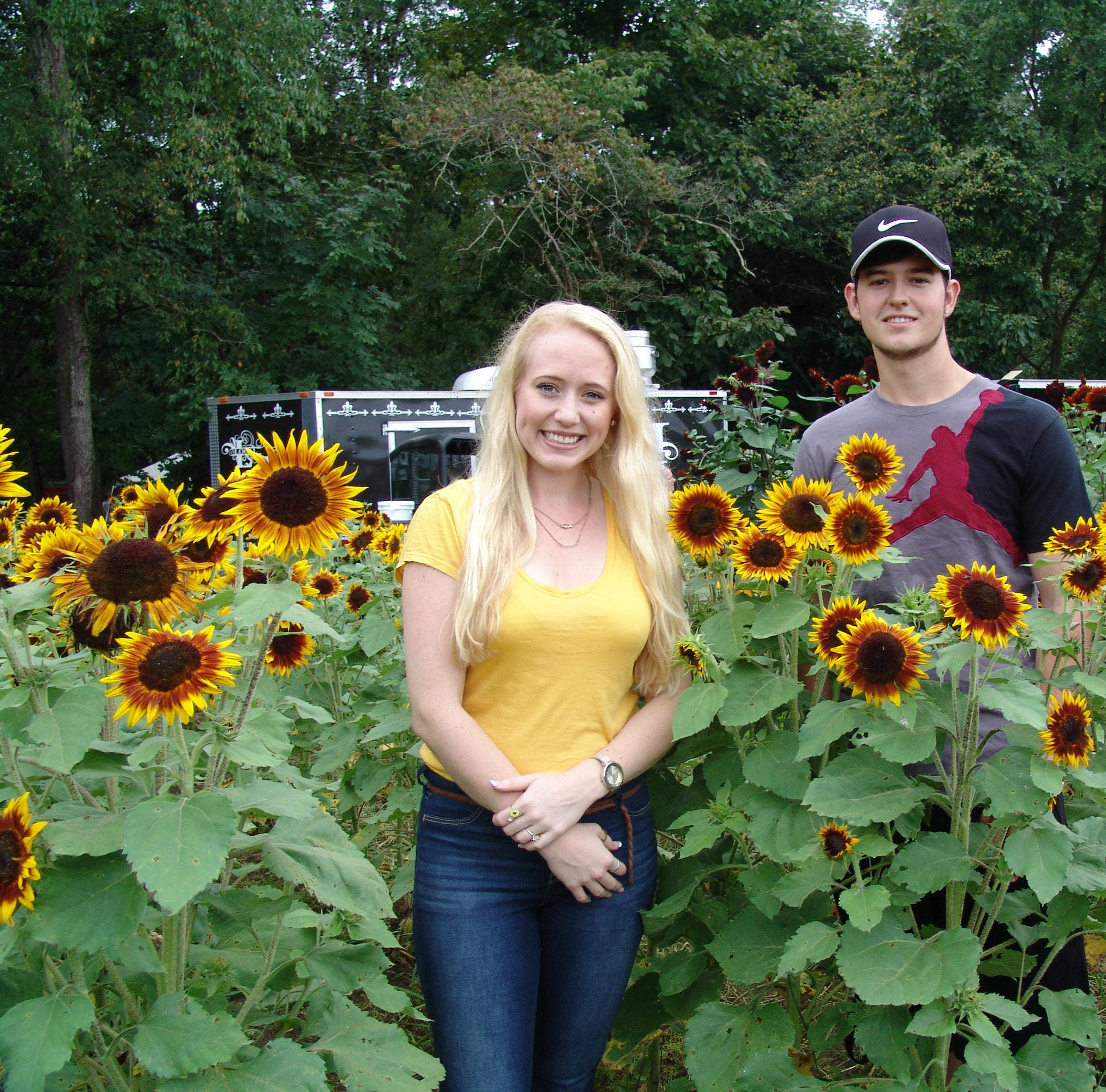 Weekend festival bloomed bright with sunflowers