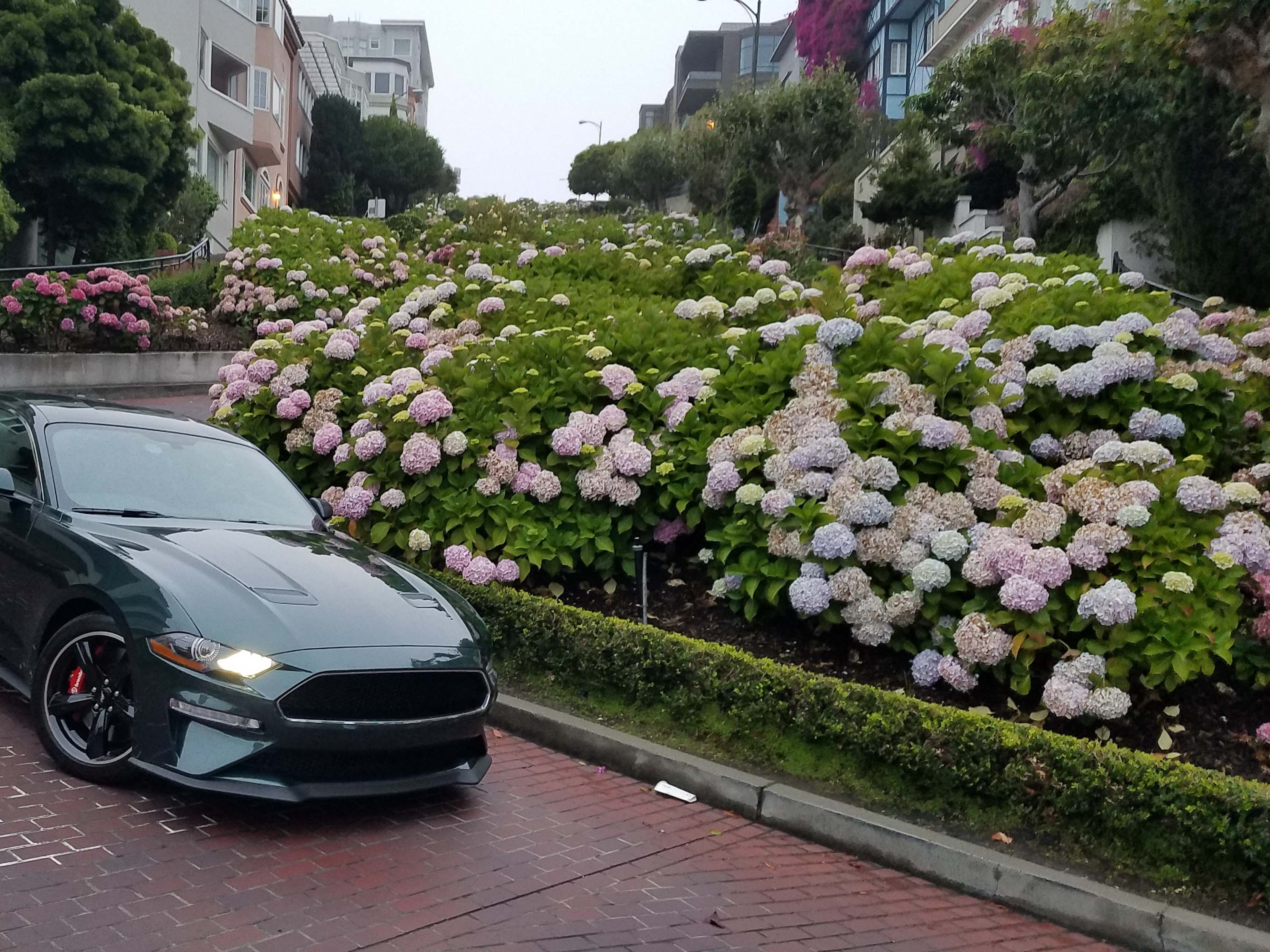 """While the movie """"Bullitt"""" filmed its San Francisco chase scene all over Russian Hill, it chose not to film on the neighborhood's most famous street — Lombard. The curved brick path makes a great backdrop for the 2019 Ford Mustang Bullitt."""