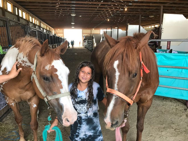 Peyton Puente, 10, of Fremont, shows off horses Lacy, left, and Lilli, at the Sandusky County Fair.