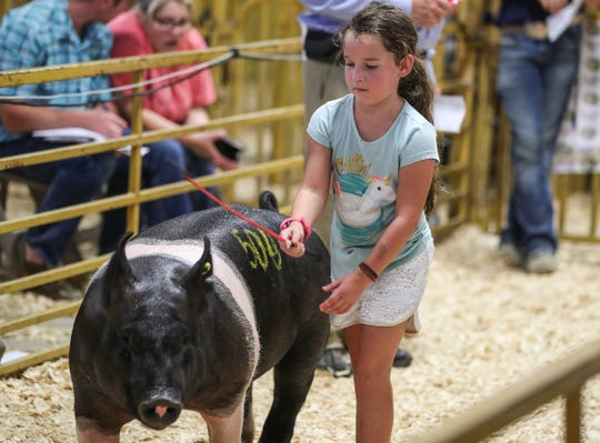 A little one shows her pig on closing day of the Indiana State Fair at the State Fairgrounds in Indianapolis, Sunday, Aug. 19, 2018.