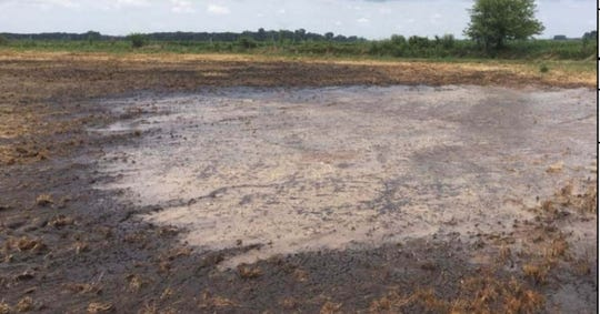 Manure mixture pooled on a farm field in Newton County, Ind. The mixture is believed to be the cause of a fish kill that affected 2,000 fish in Beaver Creek.