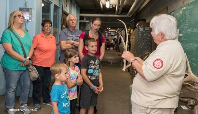 The underground winter quarters area is one of the behind-the-scenes tours at the Milwaukee County Zoo.