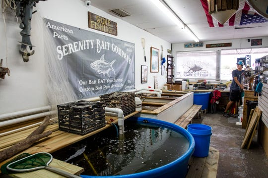 "Juan Ramos, 18, works at Serenity Bait Company in East Naples on Monday, Aug. 20, 2018. Business has been slow the past few weeks due to red tide. ""Normally, we are nonstop for my entire six-hour shift,"" Ramos said. ""So far today, we've had seven customers."""