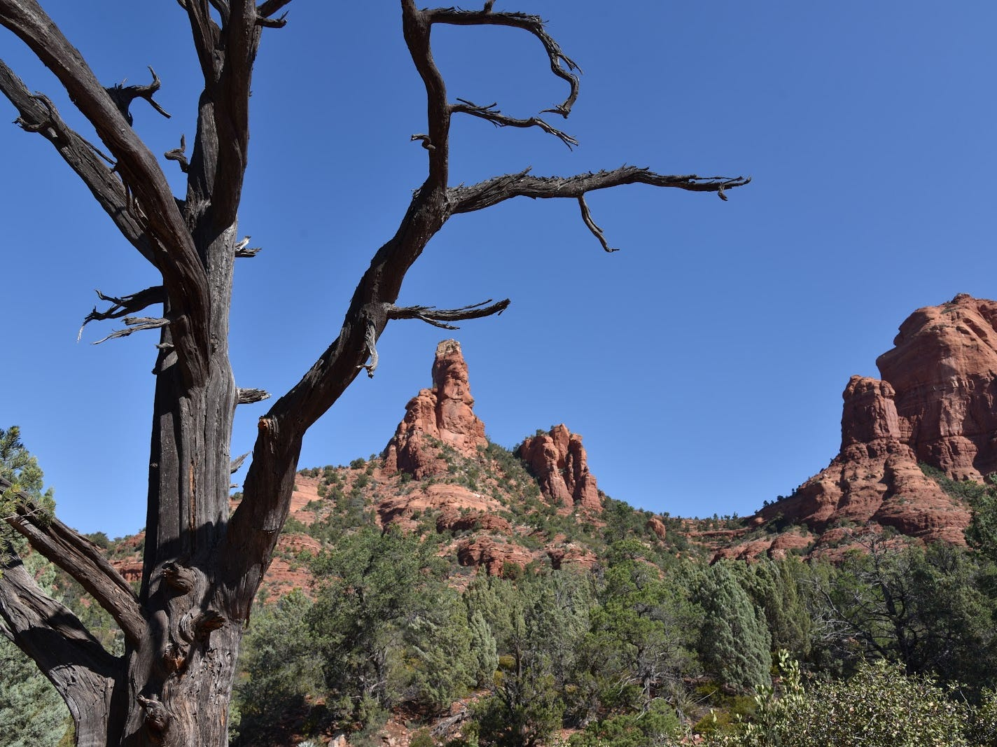 Red-rock spires seen from the Jordan Trail.