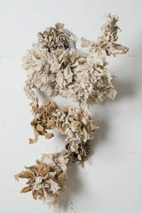 """Abundance II"" by Jessica Elena Aquino is made with recycled paper towels."