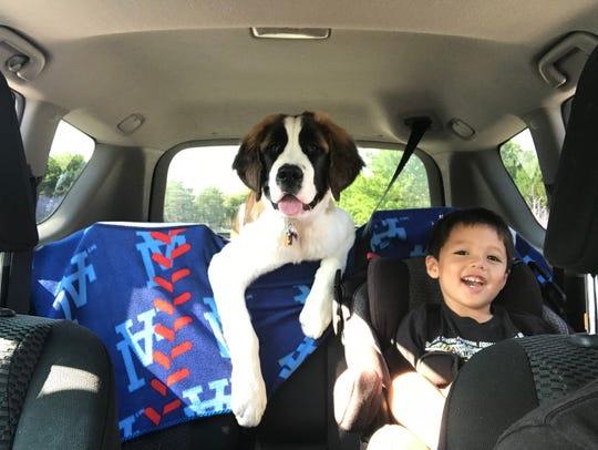 Ripley Murray (dog) and Dominic Murray (kid).