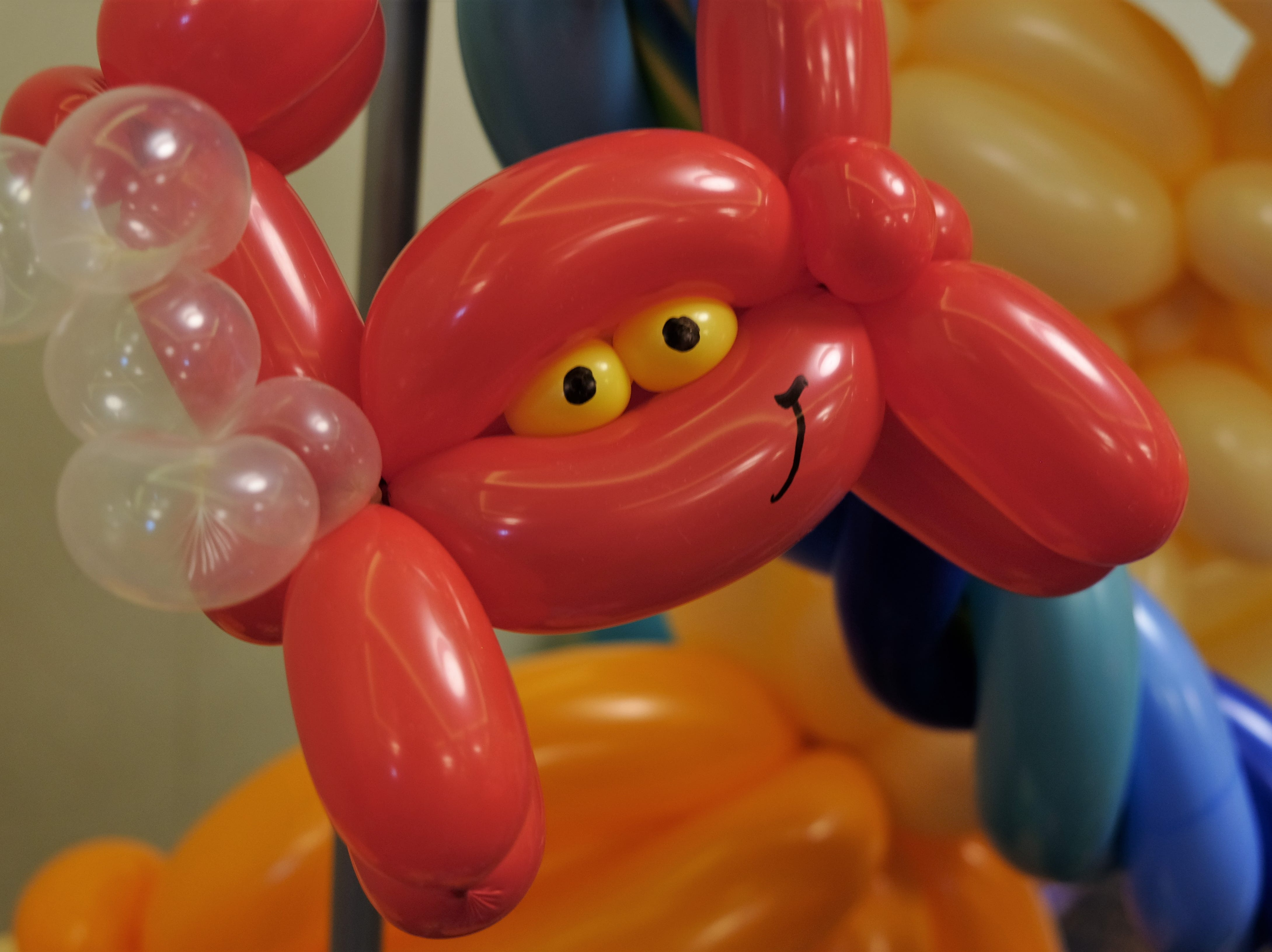 Not all crabs can be eaten. This rubbery crustacean is part of a balloon display crafted by Renate McIntosh.