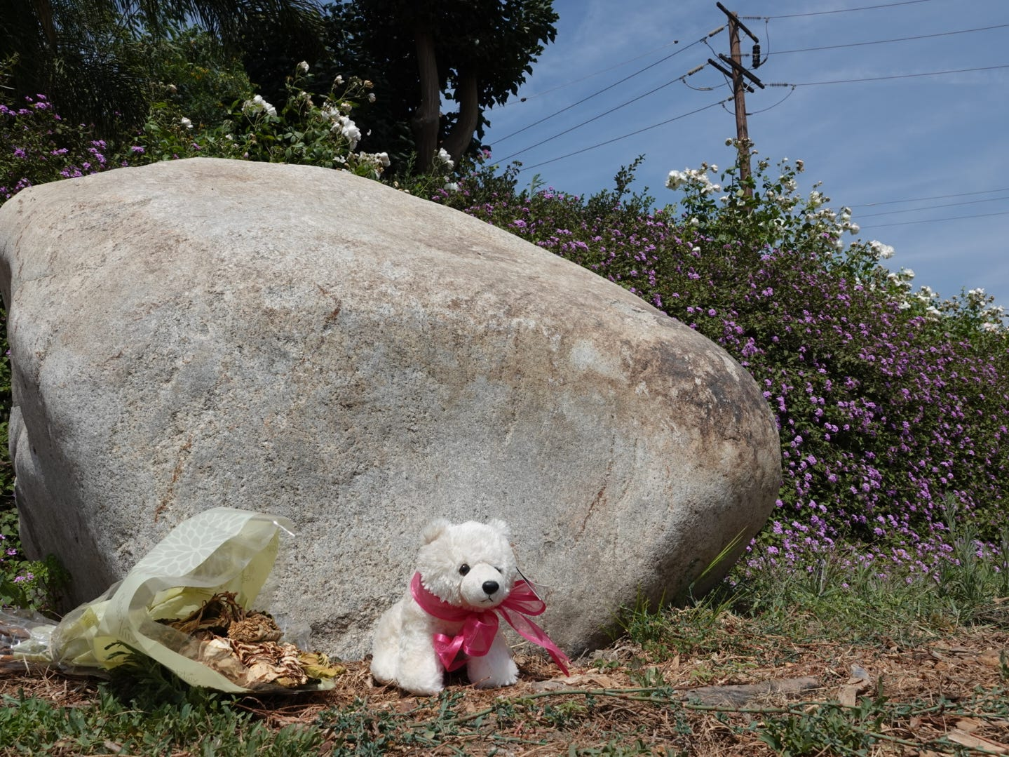 A stuffed bear and a dried bouquet of flowers were still visible Monday near the scene of a fatal crash on Highway 118 at Balcom Canyon Road that killed a 9-year-old boy this month.