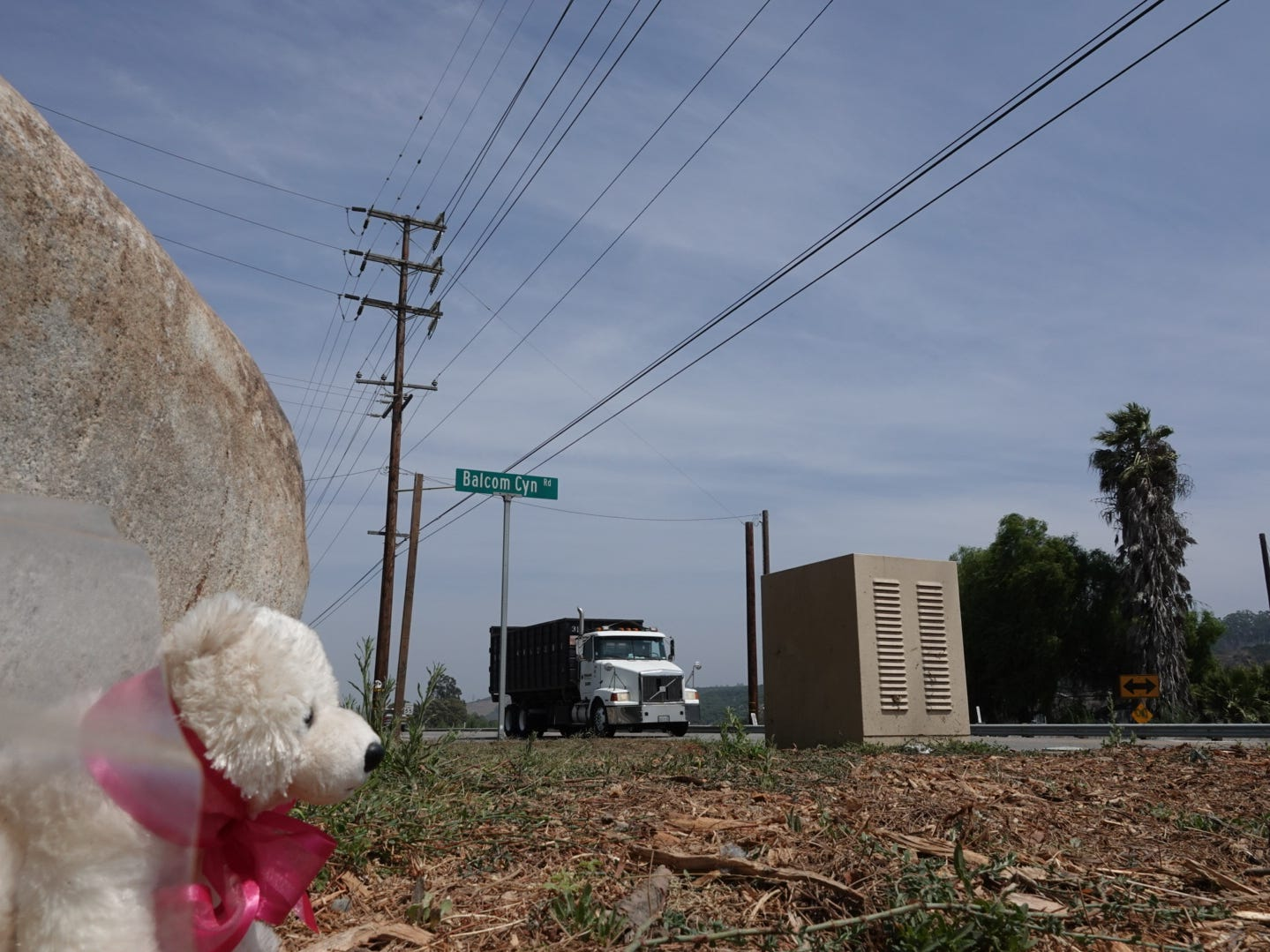 A stuffed bear and flowers had been placed by a rock near the intersection of Balcom Canyon Road and Highway 118, where a 9-year-old boy was killed in a fatal crash this month. Residents want a signal at what they say is a dangerous corner.