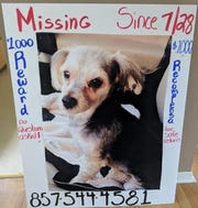 Rockland's Missing Pet Volunteer Search Team shares a photo of a post about Kai, who is still missing in Haverstraw on Aug. 16, 2018.