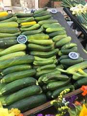 Zucchini is prolific in the garden and has proven to be a delicous, versatile food ingredient in the kitchen.