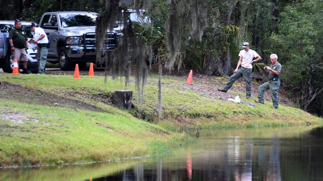 Law enforcement with S.C. Department of Natural Resources take pictures of the site where authorities say Cassandra Cline was dragged into a lagoon by an alligator and killed while trying to save her dog on Monday, Aug. 20, 2018, on Hilton Head Island, S.C. Cline was walking the dog along a residential area of Sea Pines Resort when she was attacked, state and local officials said. (Drew Martin/The Island Packet via AP) ORG XMIT: SCHIL201
