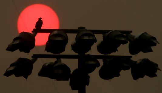 Osprey Sun