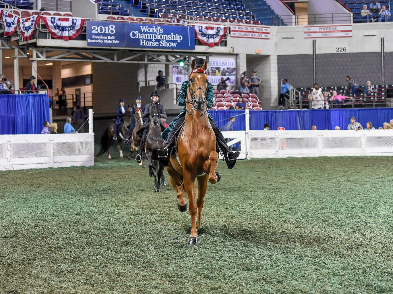 Northern Asset leads the way into Freedom Hall with Ali Degray for Helen Rich in the Three Gaited over 15.2 hands Amateur class