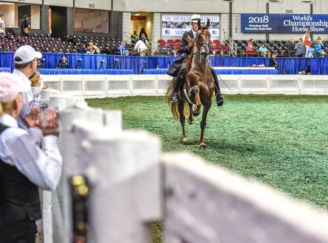 Owner Mary Gaylord McClean watches her home bred stallion, reining World Grand Champion 5 Gaited horse, Top Of The Mark win the stallion class with trainer Tre Lee