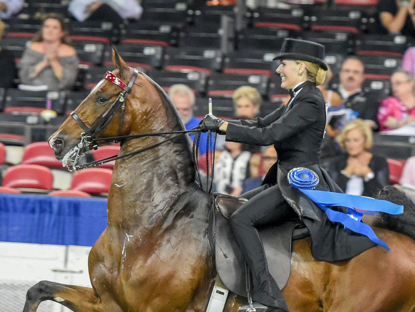 Amateur over two 3 Gaited class winner Sedgefield's Mirror Image (124714G) (WC, RWCC) 2012 