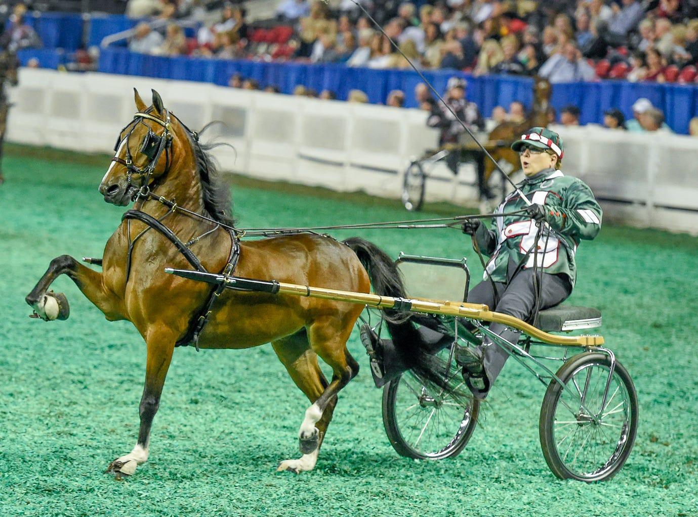 Roadster Pony Junior winner Heartland Magic Moment with trainer Maureen Campbell for ownerToni Nastali