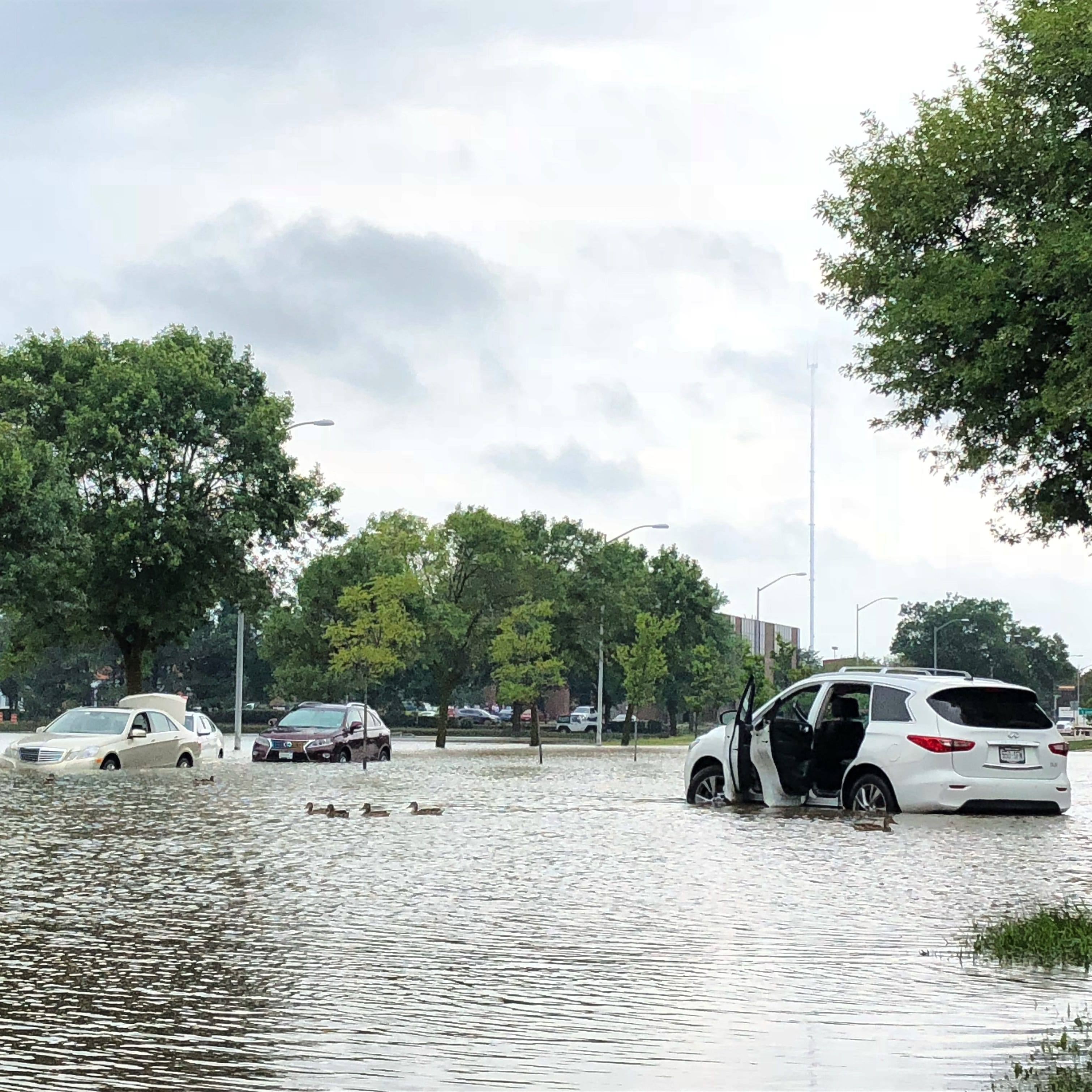 Near-record rain swamps Dane County, Madison, killing a motorist; widespread flooding reported