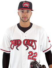 Devin Williams was the Brewers' top draft pick (54th overall) out of Hazelwood (Mo.) West High School in the 2013 draft.