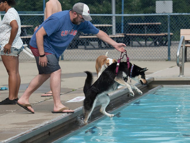 Michael Carnesecchhi helps Skye into the pool.