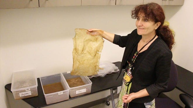 Galina Mihaleva holds up a brittle prototype as she explains the process of growing textiles with kombucha.