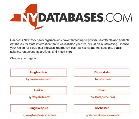 NY DATABASES logo