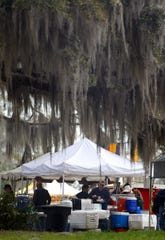 Ancient oaks filled with Spanish Moss are part of the charm of the Red Hills Horse Trials in Tallahassee.