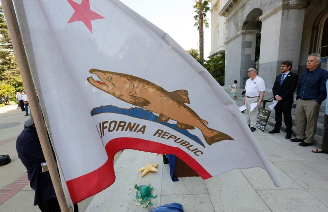 A salmon replaces the bear on the California state flag that was flown at a news conference held in support of a proposal by state water officials to increase water flows for the lower San Joaquin River to protect fish, at the Capitol on Monday in Sacramento. The State Water Resources Control Board is holding hearings this week concerning a plan to allow more water to flow freely down the Sacramento-San Joaquin River Delta from February to June, meaning less water will be available for farming and other needs.