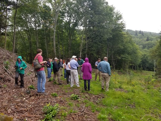 Partners involved in the creation of the William H. Silver Game Land in Maggie Valley take a hike through the 2,000-acre property Tuesday, Aug. 21.