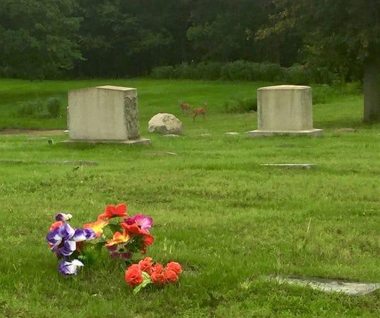 Harleigh Cemetery in Camden