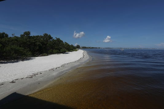Red Tide Wed 922 Gall020