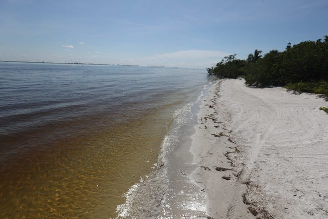 The beach area around Lighthouse Point on Sanibel Island was clear of dead fish on Wednesday 8/22/2018 morning. A red tide bloom in the waters off of the coast  Southwest Florida is killing and affecting marine life. Fluctuations in water quality and beach conditions can change on a daily to almost an hourly basis.