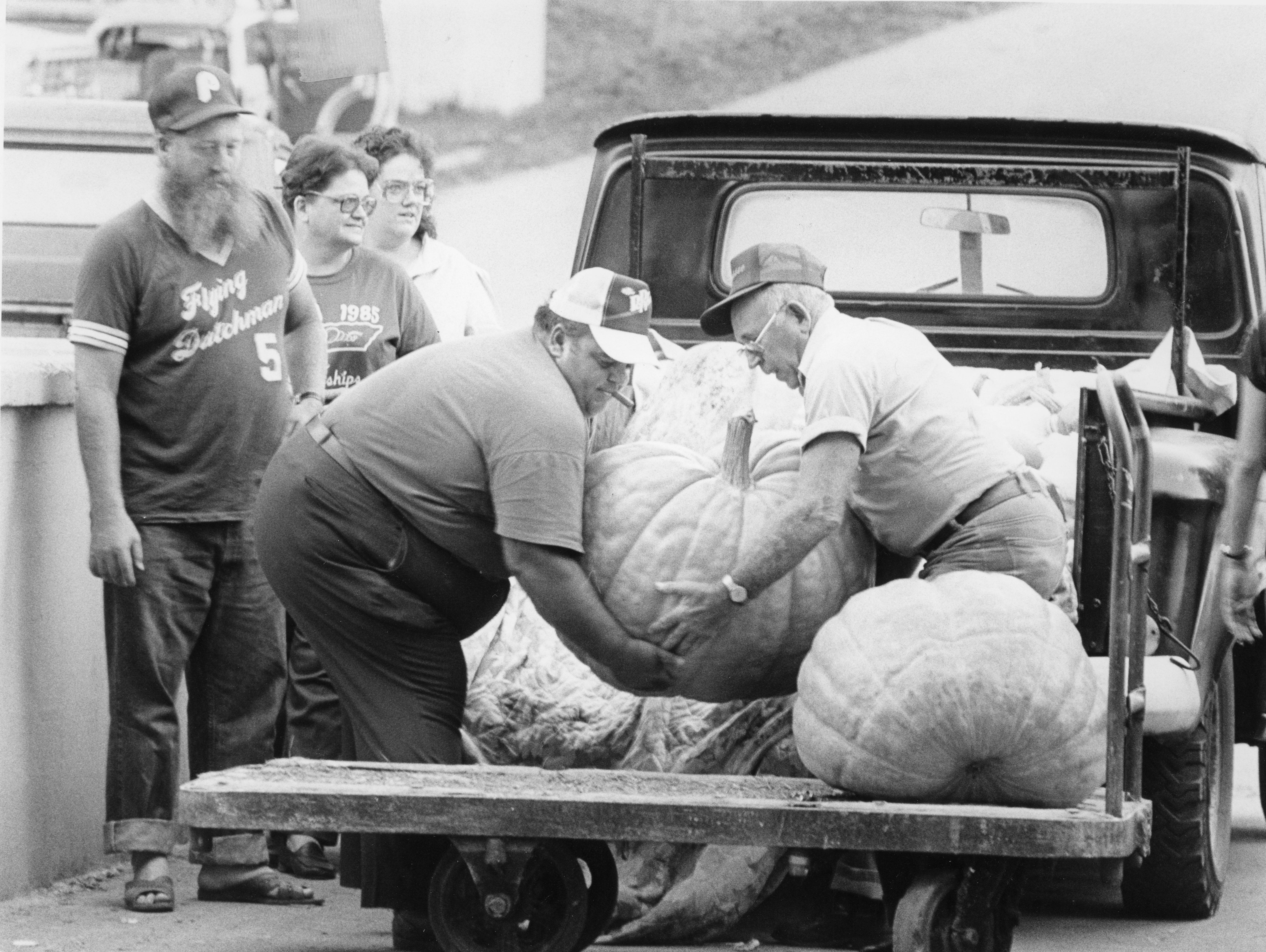 David Roop, left, of Hurst Lane in the Halls area unloads some large pumpkins with the help of B. O. Ogle on September 6, 1985. Roop guessed his large pumpkins would weigh between 180-200 pounds. He has been growing super sized pumpkins in his garden for the last seven years.