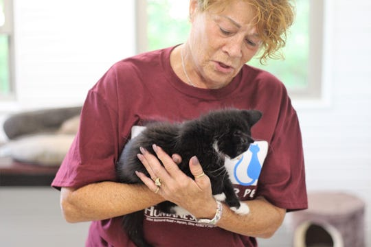 Sandy Azaroff with the Marion Area Humane Society cradles a cat at the organization's shelter on Richland Road. Her organization entered into talks with Marion County Commissioners about hiring a new humane agent. She said her organization simply can't afford to fill the role.