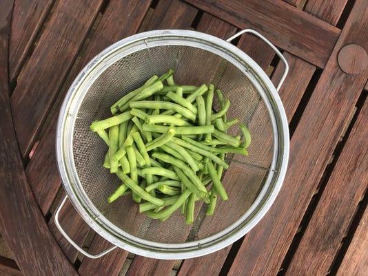 tallgrass29-beans