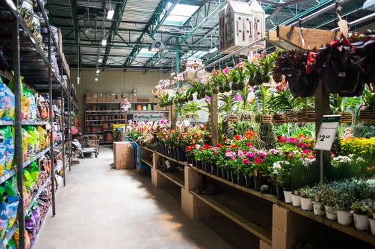 An assortment of flowers and plants is seen in the outdoor section of Orchard Supply Hardware's new store in Naples on Feb. 27, 2017.Orchard Supply Hardware, an American retailer of home improvement and gardening products with two locations in the Naples area, is closing all its stores.