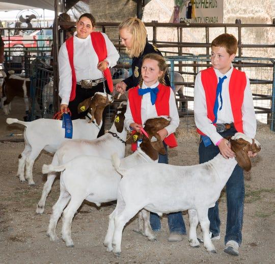 Kids show their livestock at the Lyon County fair.
