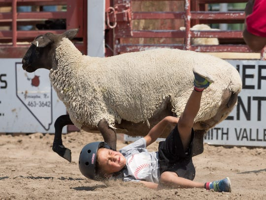 Anthony Nunez falls off his sheep during the kids' Mutton Busting event.