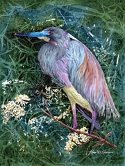 """""""Tri-colored heron"""" won 3rd Award of Excellence in Brush Strokes 2017."""