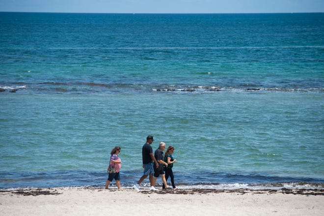 "Cyndi Humphrey (from left), James Humphrey, both of Ruther Glen, Virginia, and Marc Ginsberg and Leah Ginsberg, both of Port St. Lucie, take a stroll along the beach Wednesday, Aug. 22, 2018 at Bathtub Reef Beach in Martin County. Beachgoers were instructed to stay out of the water by a ""no swimming"" flag flying from lifeguard stands since blue-green algae was spotted close to shore Tuesday at one of the county's most popular beaches, prompting officials to close the beach for swimming."